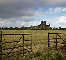 Dunbrody Abbey, County Wexford by Andrew Jones