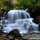 Lower Decew Falls by Rex  Montalban