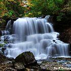 Lower Decew Falls by Rex  Montalban