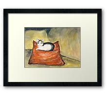 Kitten on Silk Cushion Framed Print