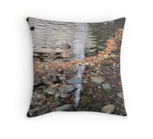Does water flow uphill? Throw Pillow
