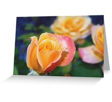 Yellow and pink-tinged roses Greeting Card