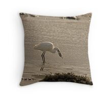 Little Egret catching a flat fish Throw Pillow