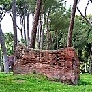 Ancient Wall at Borghese by Peggy Berger