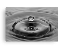 Water Drop Black and White Canvas Print