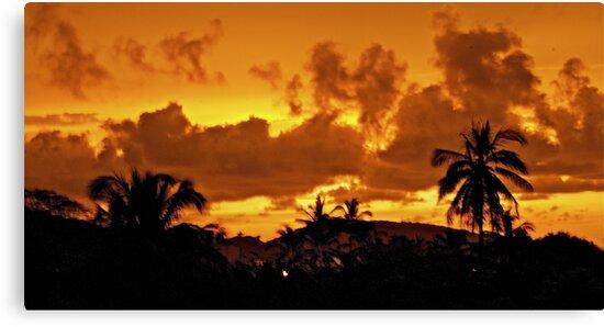 Mexico Sky - Paradise by Jessica Karran