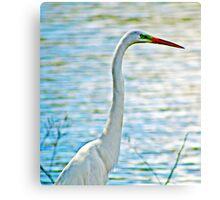 White Crane by Lake Canvas Print