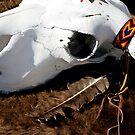 skull & feather by yurablank