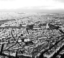 Sprawling Paris by twoboos