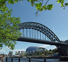 """Summertyne"" by d1066"