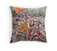 Maple Tree Frost Throw Pillow
