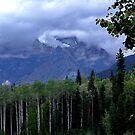 Mt. Robson Park (1) by Jann Ashworth