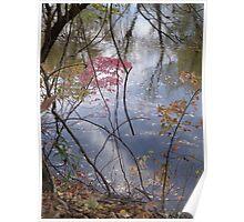 The lovely Farmington River Poster