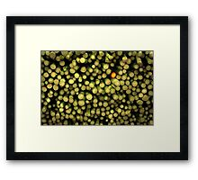 lonely red asparagus Framed Print