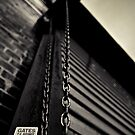 Chain 2 by Shannon Holm