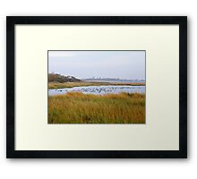 Plum Beach Framed Print
