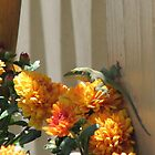 Anole For Fall-2 MUMS THE WORD by JeffeeArt4u