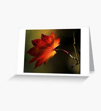 Autumn's Shadow Greeting Card
