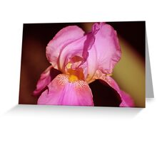irish flower Greeting Card