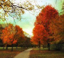 Maples by Jessica Jenney