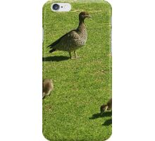 Goose and Goslings iPhone Case/Skin