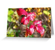 Poisonous Autumn Splendor Greeting Card