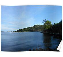 Tree Reflections - Stornoway Marina Poster