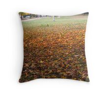 Blanketed Ground Throw Pillow