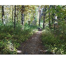 Peaceful Path Photographic Print