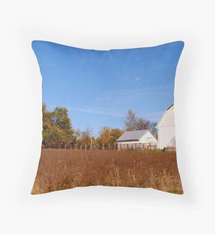 102509-219 Throw Pillow