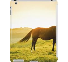 Horse grazing the grass at sunrise iPad Case/Skin