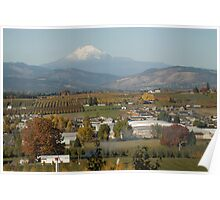 Mt. Hood and orchards Poster