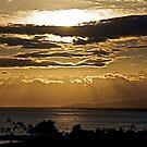 Hawaiian Sun Rays by Cheryl  Lunde