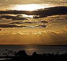 Hawaiian Sun Rays by Cheryl  Lunde