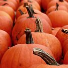 Pumpkins in the Midwest by Hallie Duesenberg