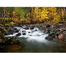 Autumn Voyage Photographic Print