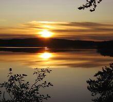 On Golden Pond by McTavish