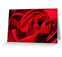 The Rose of Love Greeting Card
