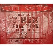 Site Safety Photographic Print