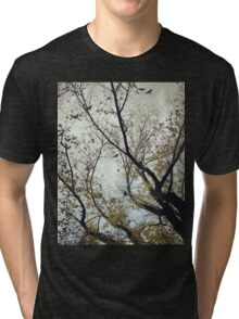 Birds Between The Trees Tri-blend T-Shirt
