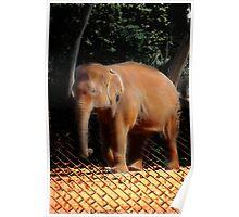 Lightening Elephant Poster