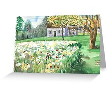 Daffodils with the cottage. Greeting Card