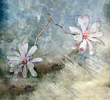 A Pair of Magnolias #2 by Elaine Teague