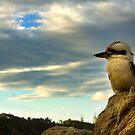 Kookaburra's Rock by Luke and Katie Thurlby