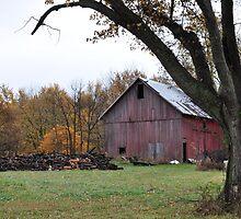 Farm Scene in the Fall by mltrue