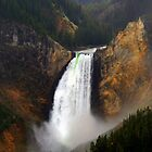 Lower Falls - The Front View by Vivek Bakshi