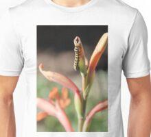 African Monarch Caterpillar Unisex T-Shirt