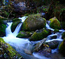 Langra Falls by becks78