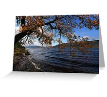Water in the Glen Greeting Card