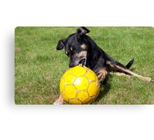 Ball Must Die Canvas Print